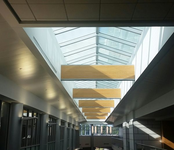 Finished ridgelite provides daylighting