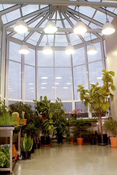 Greenhouse at Bethel College