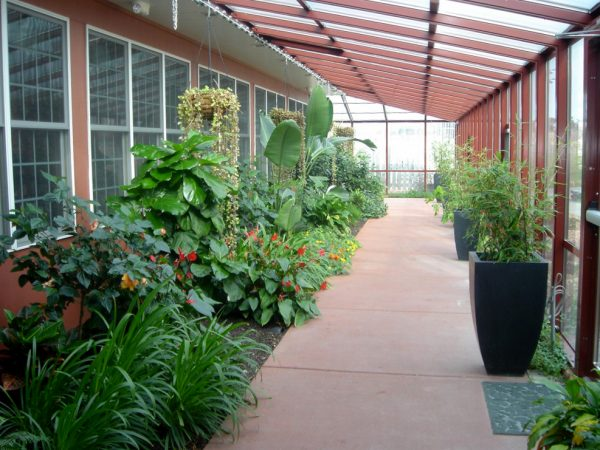 Another view of solarium walkway